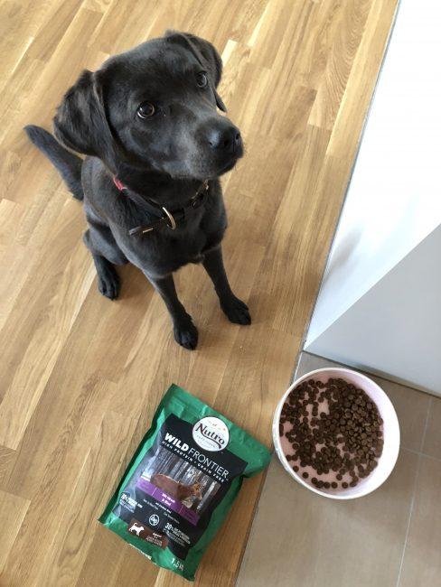 Und schmeckt's? Clean Feeding mit Nutro – Emma macht den Test!